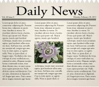 """Daily News"" newspaper"