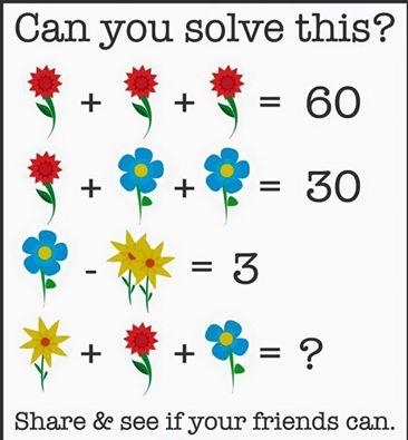 Ambiguous flower puzzle